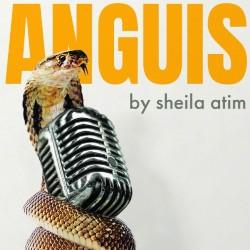 ANGUIS, 2019